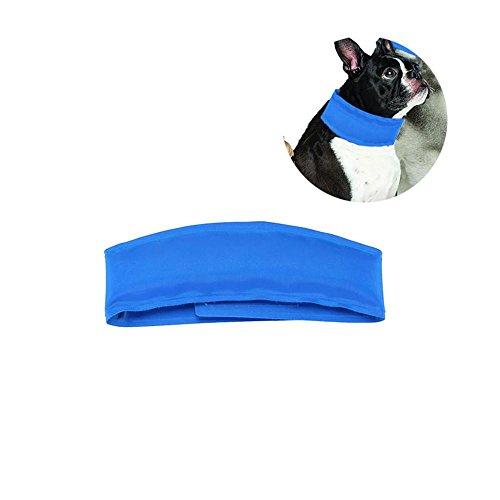 Headbands Rhinoceros Headwear Bandana Sweatband Gaiter Head Wrap Mask Neck Outdoor Scarf