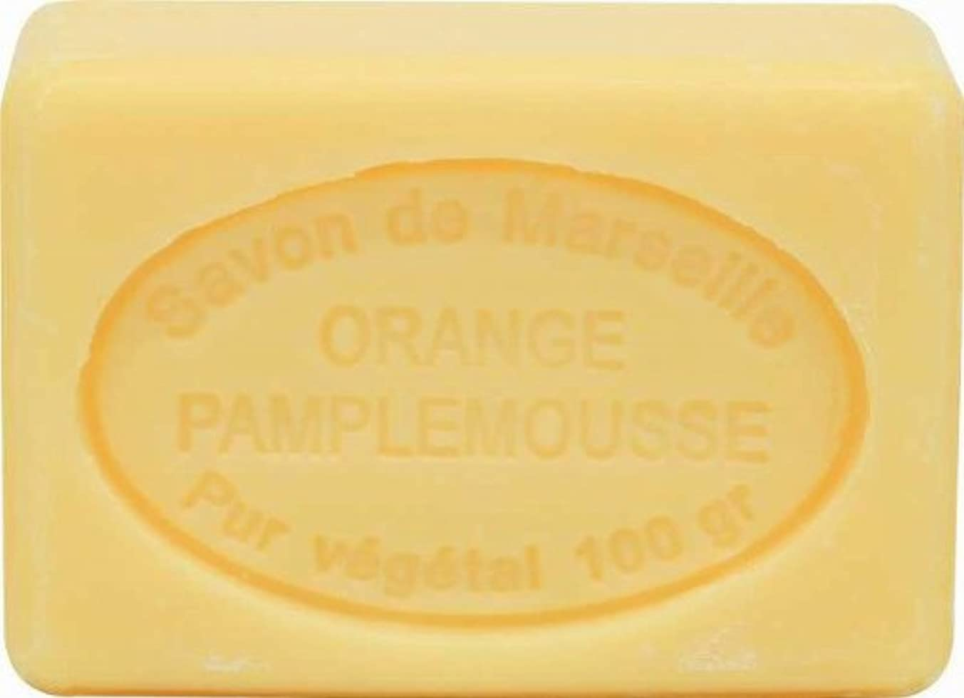 レバークール歌手ル?シャトゥラール ソープ 100g オレンジグレープフルーツ SAVON 100