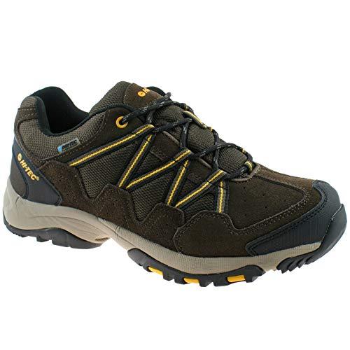 Hi-Tec Mens Rambler WP DK Chocolate/Gold Waterproof Walking Hiking Shoes -UK 8 (EU 42)
