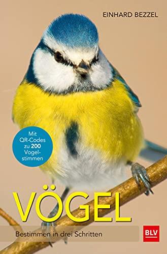 Vögel: Bestimmen in drei Schritten