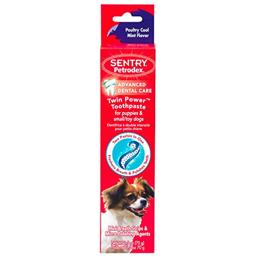 Petrodex Twin Power Toothpaste for Puppies and Small Dogs, Poultry Cool Mint Flavor, 2.5 oz