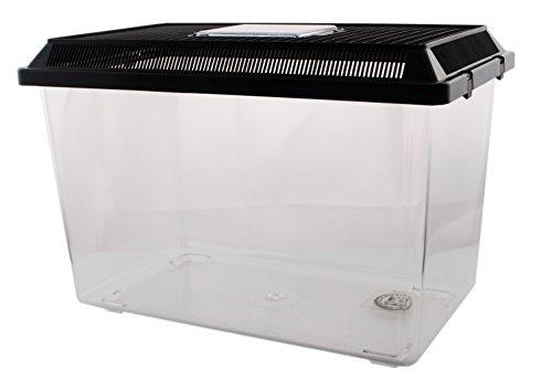 Dragon Neu PET-PLAZA Kunststoffbox - Faunarium - Kunststoffterrarium - Faunabox - Insektenbox - Insektenterrarium - Box für Futterinsekten (37 x 22 x 25,5cm)