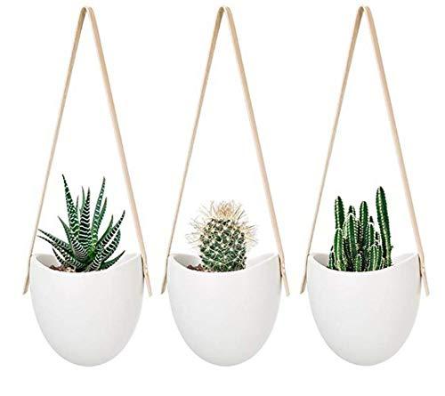 Atlnso - Juego de 3 maceteros de pared de cerámica blanca de porcelana para colgar, para interior y exterior, balcón, jardín, plantas suculentas, plantas de aire