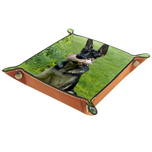 Caja de almacenamiento pequeña, bandeja de valet para hombre,perro joven alemán pastor,Organizador de cuero para llaves de caja de monedas