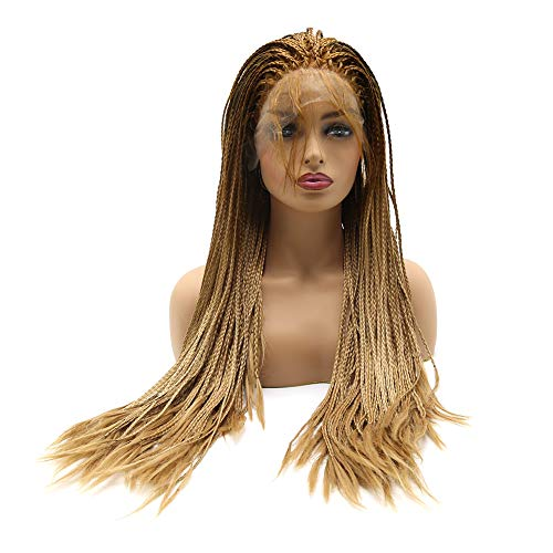 Clolorfulwigs Micro Braided Lace Front Wigs Dark Roots Brown Ombre Honey Blonde Wig with Baby Hair Heat Resistant Fiber Synthetic Lace Front Braid Wig Box Braids Wig (24inch)