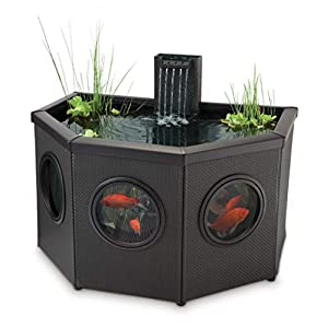 Blagdon Affinity Half Moon Affinity Mocha Weave Living Feature Pool, Comes with Inpond 5-in-1 3000 Filter Pu...