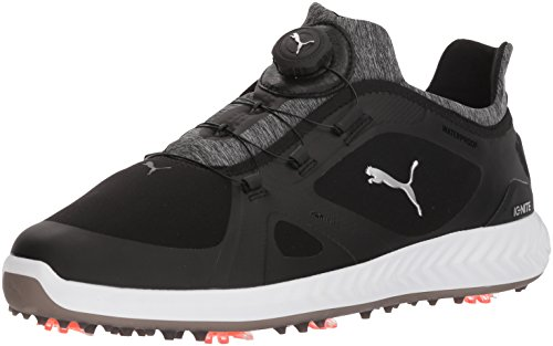 PUMA Golf Men's Ignite Pwradapt Disc Golf Shoe, Black/Black, 12 Medium US