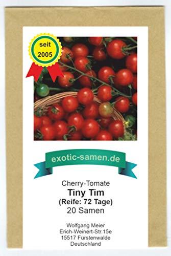 Rote Mini-Tomate - passt auf den kleinsten Balkon oder sogar auf die Fensterbank - Tiny Tim - 20 Samen