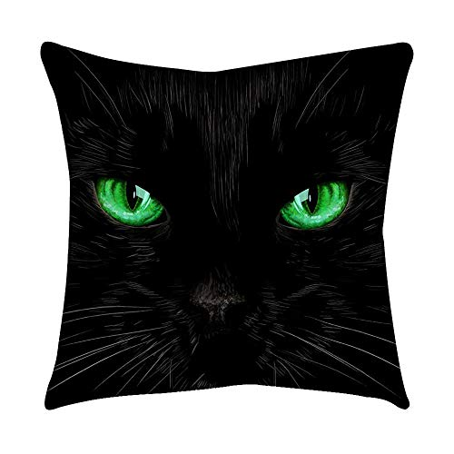 VJGOAL Moda Lindo Negro Ojos de Gato impresión en casa Decorativo Suave sofá cómodo Cojín Cuadrado Funda de Almohada(45_x_45_cm,Negro6)