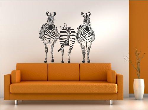 Dalinda Wandtattoo DREI Zebras Nr. L357 Wandaufkleber Wandsticker Wanddeko