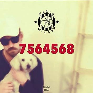 7564568