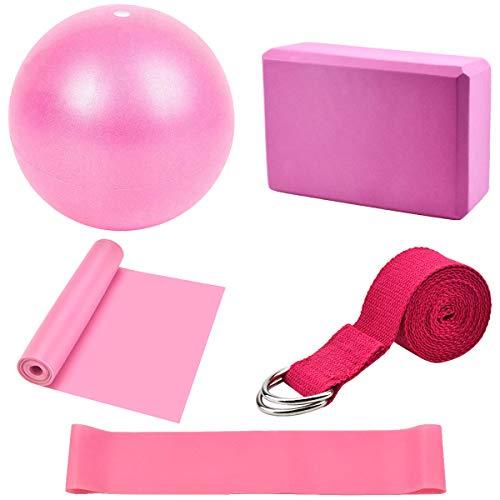 Dokpav Kit de Accesorios para Pilates Set de 5 Bandas Elásticas Fitness,Goma elasticas Musculacion,Bloque de Yoga,Pequeña Pelota de Pilates,Bandas de Resistencia para Yoga,Pilates,Fitness (Rosa)