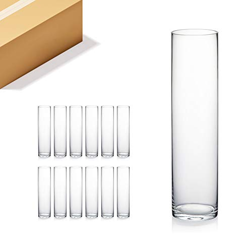 WGV Cylinder Vase Bulk, 3 W x 12 H, Clear Glass Candle Holder Bud Floral Container Planter Terrarium for Wedding Party Flowers Centerpieces and Home Office Decor, 12 Pieces