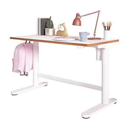 SANODESK Escritorio Infantil Ajustable en Altura/Escritorio ergonómico- 100×60 (Escritorio, Blanco)