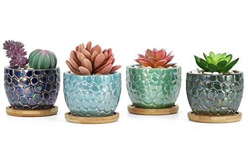 Roylvan 4 PZS Macetas de Suculentas Cerámicas, 8,5 cm Tiestos de Cactus con Orificios Drenaje Bandejas Bambú Escamas Pescado Vistosas Depuración Aire para Decoración Hogar Oficina Ventana, Azul+Verde