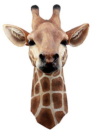 giraffe head - 5
