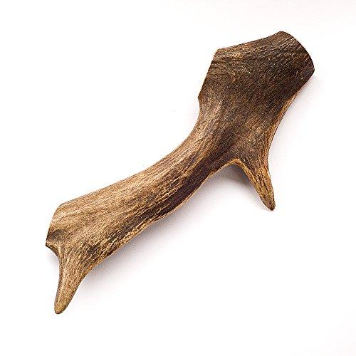 Geweih für Hunde - ganze Stange - 1 Stück der Größe 180 - 250 Gramm   Hundesnack Geweih   Geweihstange   Rothirsch   Hirschhorn Hund   Zahnpflege Hund   Abwurfstangen Geweih   natürlicher Kauknochen für Hunde