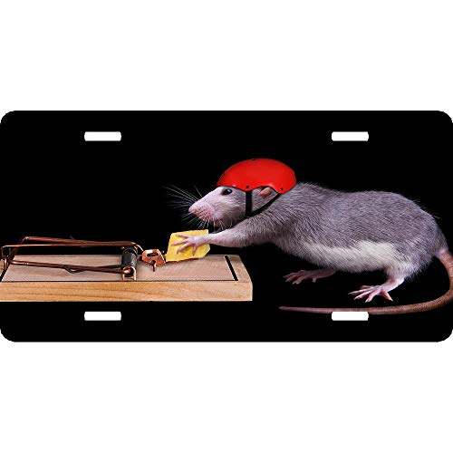 Clever Mouse Helmet Cheese Mousetrap Funny Animals Personalized Patriotic Novelty Front License Plate Decorative Vanity Aluminum Auto Car Tag 12 x 6 Inch