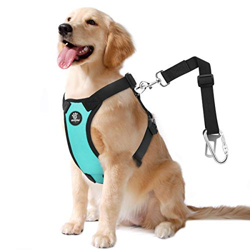 VavoPaw Dog Vehicle Safety Vest Harness, Adjustable Soft Padded Mesh Car Seat Belt Leash Harness with Travel Strap and Carabiner for Most Cars, Large Size, Blue