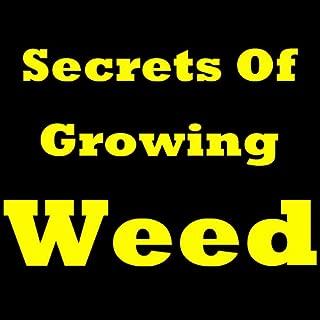 Best secrets of growing weed Reviews