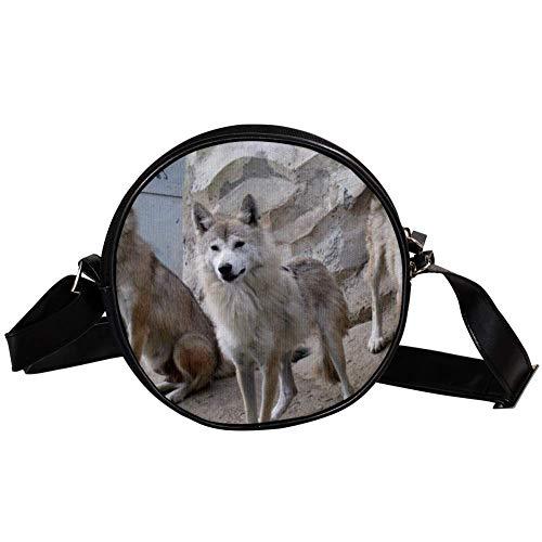 Bennigiry Damen Umhängetasche Himalaya-Wolves Rund Umhängetasche Top Handtasche