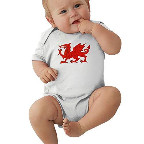 Welsh Flag Dragon Baby Boys Pijama Unisex Romper Baby Girls Body Infant Kawaii Jumpsuit Outfit 0-2t Niños,Blanca,2 años