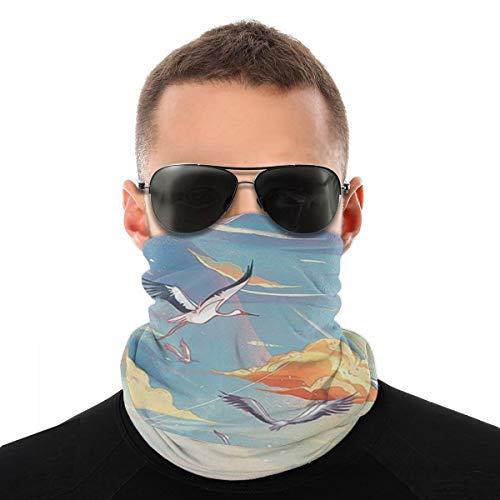 Chico Crane Headwear - Bandana protectora para el cuello, pasamontañas