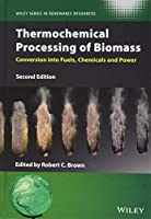 Thermochemical Processing of Biomass: Conversion into Fuels, Chemicals and Power (Wiley Series in Renewable Resource)