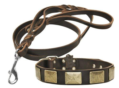 Dean & Tyler Messing Teller Leder Halsband mit passenden Braidy Haarschmuck Strauß Leine für Haustiere, 28bis 32, braun