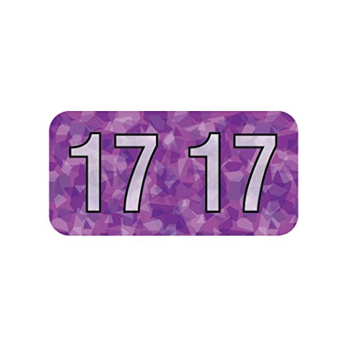 AMZfiling 2017 Year Label (Purple)- Holographic, Polylaminated, 500/Roll