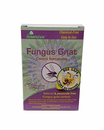 Nema Globe 4003224 Fungus Gnat Nematodes, 20 Million, White