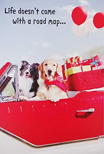 Life Doesn't Come With A Road Map But Friends Help You Enjoy The Adventure - Happy Birthday Greeting Card with Golden Retriever Labrador and Border Collie Dogs in Convertible