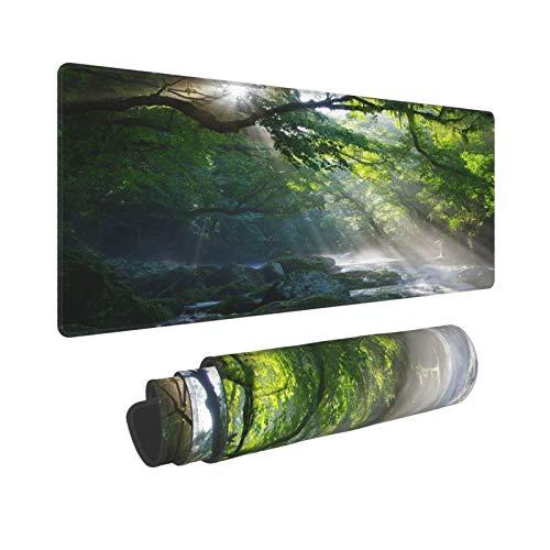 Minalo Extra Large Tapis de Souris,L-80 x 30 x 0.3cm,Rainforest , Ruisseau dans La Jungle Pierres sous l