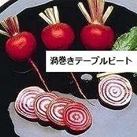 渦巻きテーブルビート 種 12粒