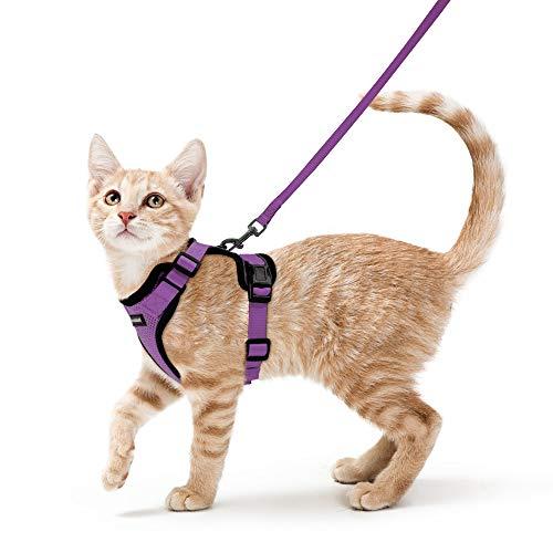 rabbitgoo Arnés para Gatos y Correa 150 cm Cuerda Chaleco Ajustable Antitirones Cómodo Material fácil de Poner y Quitar para Entrenamiento Seguridad Arnes para Gatos Mascotas Pequeño XS Púrpura