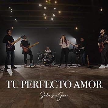 Tu Perfecto Amor