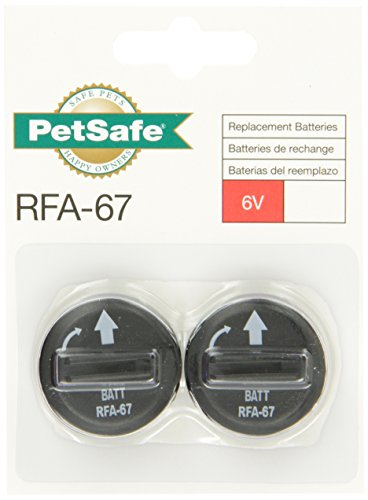 PetSafe 6-Volt Lithium Battery (Pack of 6)