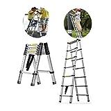 MTYLX Telescoping Ladder,Multi-Purpose Aluminium Telescoping Foldable A-Frame Ladder,Extension Extendable Ladder for Household Daily or Rv Work,Telescopic Ladders,2.9M/9.5Ft,2.9M/9.5Ft