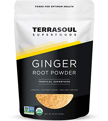 Terrasoul Superfoods Organic Ginger Powder, 1 Lb - Lab-Tested | Raw | Potent Spicy Flavor