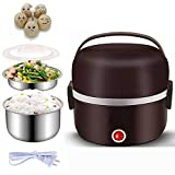Electric Warmer Lunch Box Food Heater Portable Lunch Containers Warming Bento For Home Food Grade Material 2 Layers Steamer with Stainless Steel Bowls, Egg Steaming Rack, Cupring Cup 1.3L/ 44oz