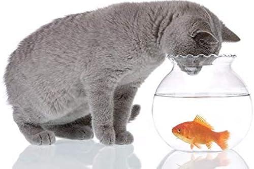 LIWeißY DIY maßen Nach Zahlen Kits,  em e, maßen Nach Zahlen Für Erwachsene Leinwand Home Decor, Katze Und Goldfischglas, Mit Rahmen, 50x6cm