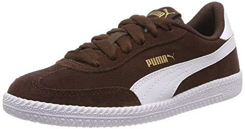 Puma Herren Astro Cup Fitnessschuhe, Braun (Chestnut White), 41 EU