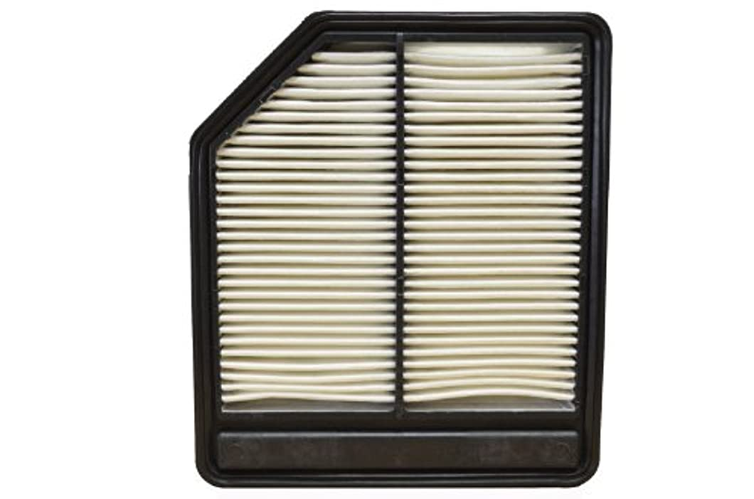 PT Auto Warehouse AF10165 - Engine Air Filter zzavfym08