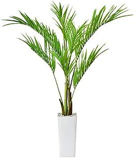 DORIS 観葉植物 光触媒 本物に近い質感 水やり不要 フェイクグリーン プラム