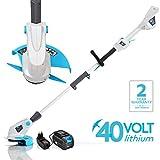 SWIFT 40V Cordless Grass Trimmer 9000 RPM 25 cm Cutting Width Lightweight Adjustable