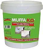 Muffa Ko Tecnostuk da 1 litro speciale fondo antimuffa