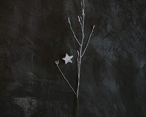 Kpoiuy Paquete De Pintura por NúMero En Lienzo Pintura Al óLeo DIY Rama Estrella Minimalismo Gris Cuadros Pintados A Mano del Arte del Colorante De AcríLico para La Sala De Estar