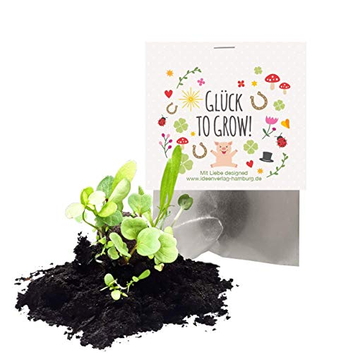 """10x \""""Glück to grow\"""" Samenbomben als Mitgebsel / Geschenk / Blumen / Aufmerksamkeit / Gastgeschenk / Seedbombs / Partytüten / Mitgebseltüten / Geschenktüten / Glücksbringer / Give-aways / Saatkugeln"""