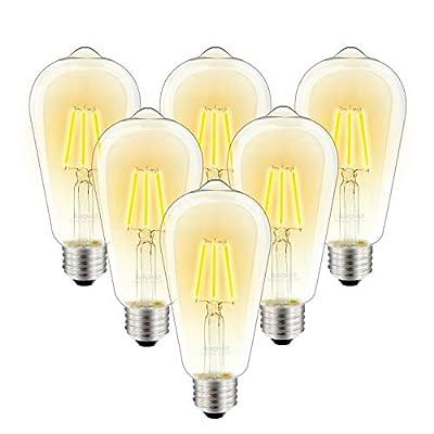 LED Dimmable Vintage Edison Led Bulbs 6W Antique Style Edison Light Bulbs, 2700K Warm White (Clear Glass), Squarrel Cage Filament Vintage Light Bulb,ST64, E26 Base (2700K-6W-6PCS)