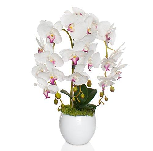 Künstliche Orchideen im Übertopf aus Keramik | Gesamthöhe: 60cm | EU Handarbeit | Farbe: Weiß
